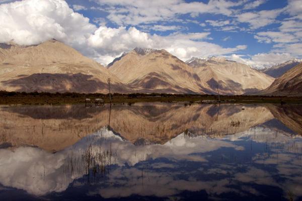 Vallée de la Nubra - Voyage à moto Transhimalayenne et Ladakh, Inde, Himalaya